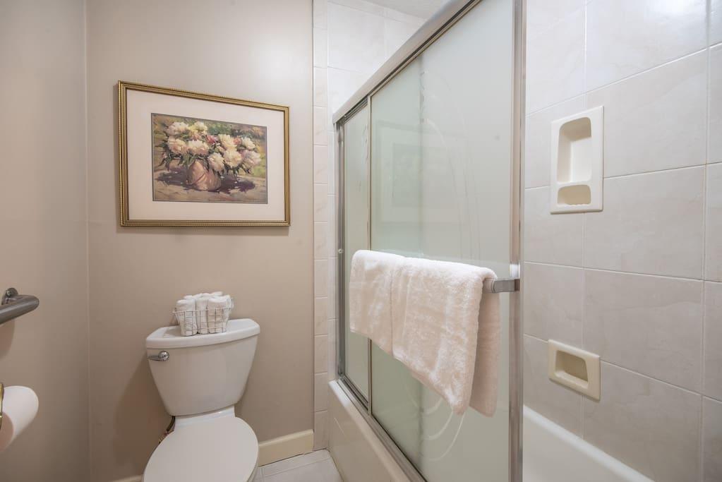 Full-sized Shower Hallway Bathroom- Door For Privacy