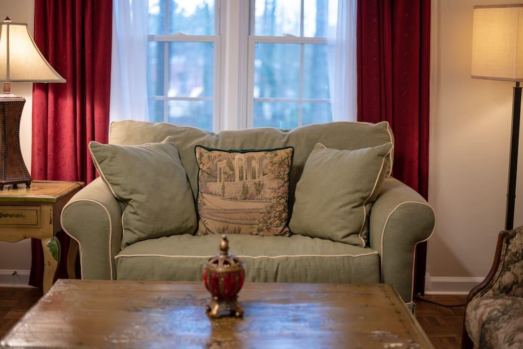 Plush Love Seat- Sofa Bed